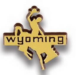 Wyoming Bronco Stock State Design Plastic Lapel Pin