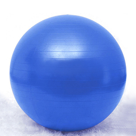 GOGO 55cm Yoga Balance Ball / Fitness Stability Ball, Blue