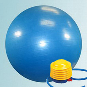 GOGO 65cm Yoga Fitness Ball with Foot Pump
