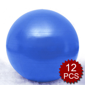 GOGO 65cm Yoga Balance Ball / Fitness Stability Ball, Yoga Accessories (Price for 12 pcs)