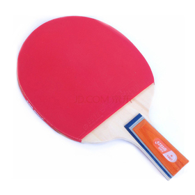 DHS Ping Pong Paddle X1007, Table Tennis Racket - Penhold