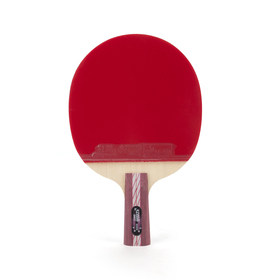 DHS Ping Pong Paddle A4006, Table Tennis Racket - Penhold