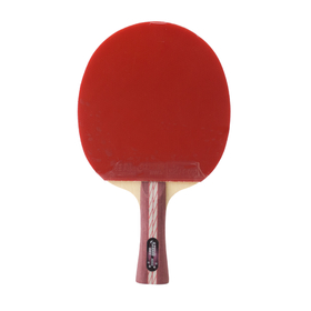 DHS Table Tennis Racket A4002, Ping Pong Paddle Shakehand
