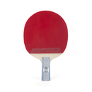 DHS Ping Pong Paddle R6006, Table Tennis Racket - Penhold