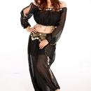 (Price/2 pcs) BellyLady Professional Dancing Costume Set, Chiffon Harem Pants And Top Set, Folklore Fun