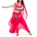 BellyLady Belly Dance Professional Costumes Set, Halter Coins Bra Top And Skirt