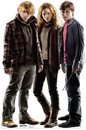 Advanced Graphics 1048 Harry Potter, Hermione, Ron Weasley- 66