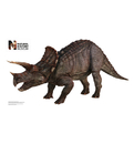 Advanced Graphics WJ1040 Triceratops WallJammer - Wall Jammer