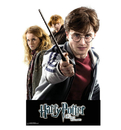 Advanced Graphics WJ1127 Harry Potter Group – WallJammer - Wall Jammer