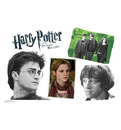 Advanced Graphics WJ1128 Harry Potter Group Walljammer Harry Potter 7 - Wall Jammer