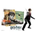 Advanced Graphics WJ1129 Harry Potter WallJammer - Wall Jammer