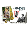 Advanced Graphics WJ1130 Hermione Granger Walljammer Harry Potter 7 - Wall Jammer