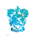 Advanced Graphics WJ1133 Ravenclaw Crest WallJammer – Harry Potter - Wall Jammer