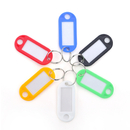 Aspire Classic Key Tag with Label Window, Assorted Colors 100 Pieces