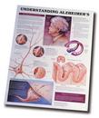 AliMed 80445- Understanding Alzheimer's