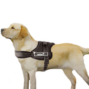 GOGO No-pull Dog Harness Vest, Adjustable Harnesses, Black And Camo Harness