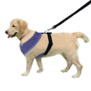 GOGO No-Pull Mesh Dog Harness Vest And Leash Set, For Puppy Pet