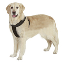 GOGO Nylon Adjustable Dog Harness, No-pull Dog Harnesses