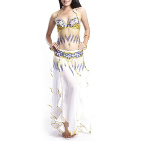 BellyLady Gypsy Belly Dance Costume, Tribal Bra, Belt and Lotus Leaf Skirt Set