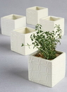 Ivy Lane Design Circle Square Flower Pots, Pack of 5
