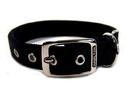 Hamilton Double Thick Nylon Dog Collar - Black - 1  X 20