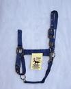 Hamilton Adjustable Chin Horse Halter With Snap - Navy - Small