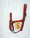 Hamilton Adjustable Chin Horse Halter With Snap - Red - Weanling