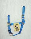 Hamilton Adjustable Chin Horse Halter With Snap - Blue - Pony