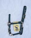 Hamilton Adjustable Chin Horse Halter With Snap - Hunter Green - Pony