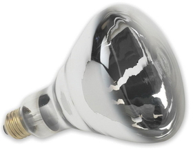 Sli Lighting Heat Lamp Bulb White / 125 Watt - 03501/6-01125