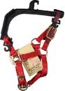 Hamilton Adjustable Horse Halter With Leather Headpole - Red - Foal