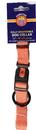 Hamilton Adjustable Dog Collar - Mango - 5/8  X 12-18
