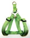 Hamilton Adjustable Easy On Harness - Lime Green - 5/8  X 12-20