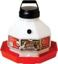 Miller Little Giant Plastic Poultry Waterer - Red - 3 Gallon