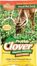 Pro-Vide Clover Chicory Forage