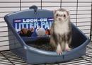 Marshall Pet Lock On Litter Pan - Medium