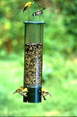 Audubon/Woodlink Bouncer Squirrel Proof Bird Feeder - Clear/Green - 7.5 Pound Cap