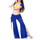 BellyLady Belly Dance Christmas Costume, Bra & Short Sleeve Top & Pants
