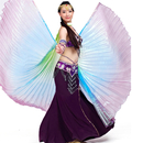 BellyLady Belly Dance Costume Isis Wings, Professional Dance Wings with Sticks