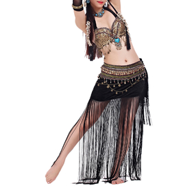 BellyLady Belly Dance Gypsy Costume, Belly Dance Bra & Skirt, Halloween Costume