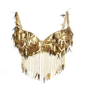 BellyLady Belly Dance Fringe Sequin Beaded Bra Top, Size For 34C