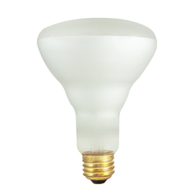Bulbrite 65BR30FL3 65-Watt Incandescent BR30 Reflector Flood, Medium Base, Clear