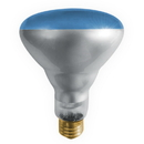 Bulbrite 100R30PG 100-Watt Incandescent Plant Grow R30 Reflector, Medium Base, Blue