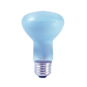 Bulbrite 45R20FL/N 45-Watt Incandescent True Daylight R20 Reflector, Medium Base, Clear