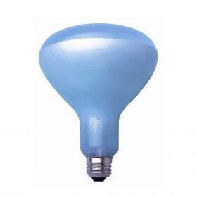 Bulbrite 65R30FL/N 65-Watt Incandescent True Daylight R30 Reflector, Medium Base, Clear