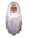 Forum Novelties 112618 Merlin Wig & Beard
