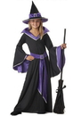 California Costumes 00275M Incantasia The Glamour Witch Child Costume