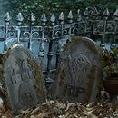 Forum Novelties 156675 Graveyard Fence (2 count)
