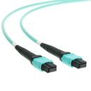 CableWholesale MPMP-31001 Plenum Fiber Optic Cable, MTP / MTP (MPO), Multimode, Duplex, 12 Strand, 40/100 Gbps, 50/125, 1 meter (3.3 foot)