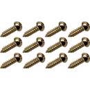 Screws for mounting tuning machine, Fender vintage (12 pieces)